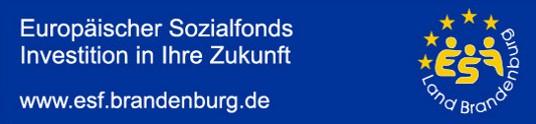 esf-banner